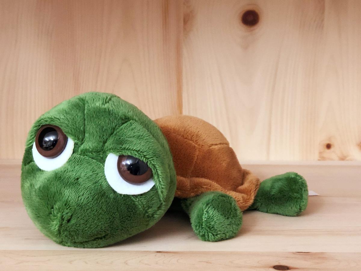 """Schildkröte """"Modulinchen"""" im Zirbenregal """"Ingrid"""""""